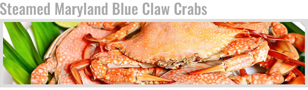 Steamed Maryland Blue Claw Crabs